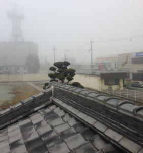 朝窓の外を見て、霧がかかっているなら絶好のお洗濯日和!