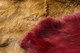 毛皮 ファー 臭い 保管 クリーニング 解決方法