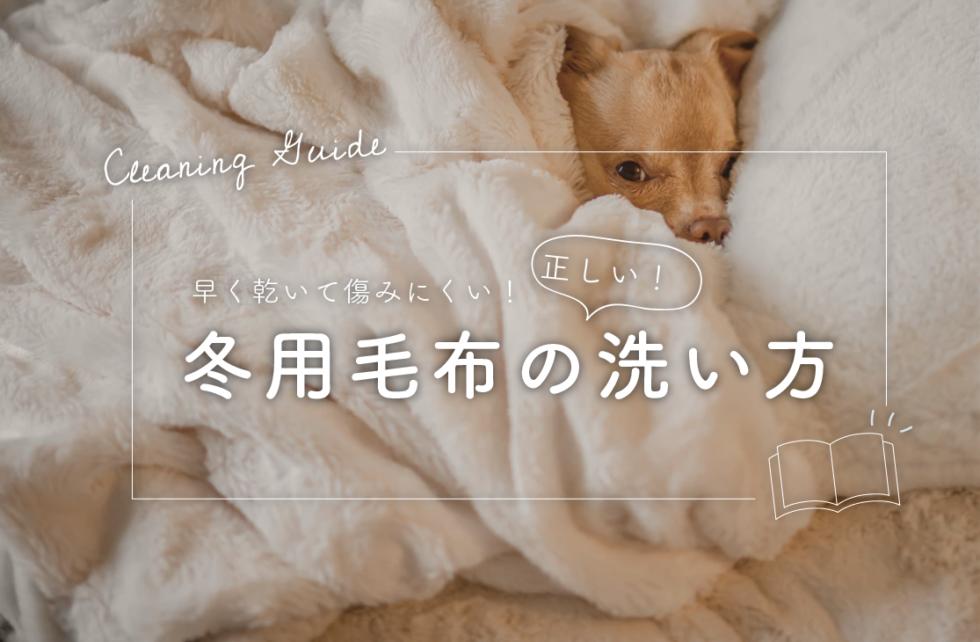 早く乾いて傷みにくい!冬用毛布の正しい洗い方と干し方